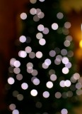 white light 13/12/15
