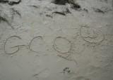 2013 ECPR Beach (91).JPG
