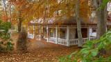 DSC07699 - Autumn House