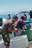 Fishermen, Agoho Beach   DSC_8798.JPG