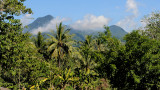 Mt. Timpoong   DSC_8812.JPG