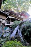 Enigmata Treehouse and Sculpture Garden DSC_8854.JPG