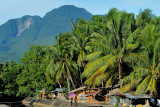 Coconut trees and volcanic mountains...   DSC_8899.JPG