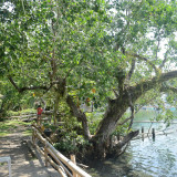 Taguines Lagoon   DSC_8923.JPG