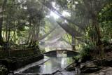 Ardent Hot Springs DSC_8989.JPG