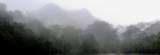 Mt. Guidabon, Balinsasayao    DSC_9972.JPG