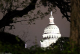 March 8th 2012 - Capitol at Night - 0294.jpg