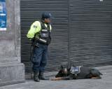 Plaza de Armas: An Officer and His K-9 Partner