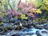 Lee Vining Creek, CA - Bao Ha