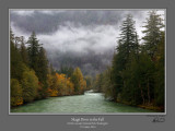 Skagit River Fall.jpg