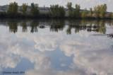 Reflet de nuage