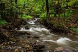 The Stream to Tinker's Falls