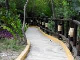 Pathway at Tulum