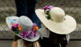 Race day hats