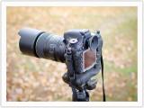 Nikon D610 beats dust problem