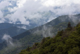 Clearing Skies Off Newfound Gap Road