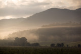 Early Morning Haze In Cades Cove