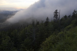 A Moving Cloud Bank Over Clingmans Dome
