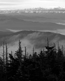 Trees Mountains and Clouds-Smoky Mountain National Park