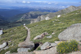 A Trail On Mount Evans