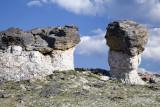 Mushroom Rocks-Trail Ridge Road