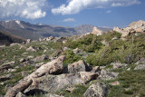 The High Country-RMNP