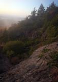 Morning On Mount Mitchell