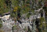 Cliffs Near Linville Falls