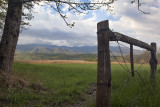 Fence In Cades Cove