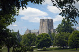 Burruss Frame By Trees