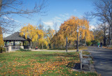 A Fall Afternoon Walk