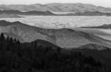 View From The Blue Ridge Parkway- An Ocean Of Clouds-North Carolina