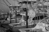 Fishing Boats Docked In Hatteras, North Carolina