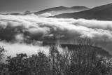 Wind Blown Clouds -North Carolina