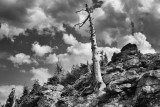Near Trail Ridge Road, Rocky Mountain National Park-Colorado