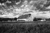 Farm And Ranch-Near Alamosa, Colorado