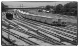 Roanoke Rail Yard