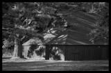 Old Barn At Glen Alton, Giles County, Virginia