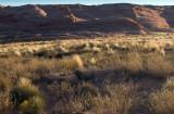 High Desert Afternoon Light