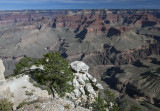 A Morning View Of The Grand Canyon From The South Rim