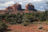 A Southern View Of Cathedral Rock, Sedona
