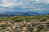 A Section Of Tonto National Forest Off Route 87 Near Scottsdale/Mesa