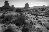 The Mittens In Mid-day Light- Monument Valley