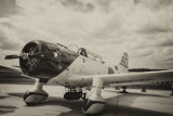 A Japanese World War II Alchi D3A Val -  A Ghost From The Past