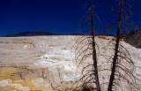 Mineral Deposits-Yellowstone