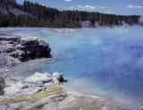 Steaming Pools-Yellowstone