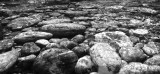 Rocks in a stream bed.