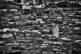 Ruin walls.