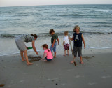 The cousins go sand crab hunting