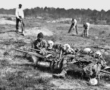 June 1864 - Collecting the remains of soldiers killed in battle